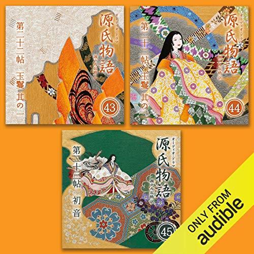 『源氏物語 瀬戸内寂聴 訳 3本セット(十五)』のカバーアート