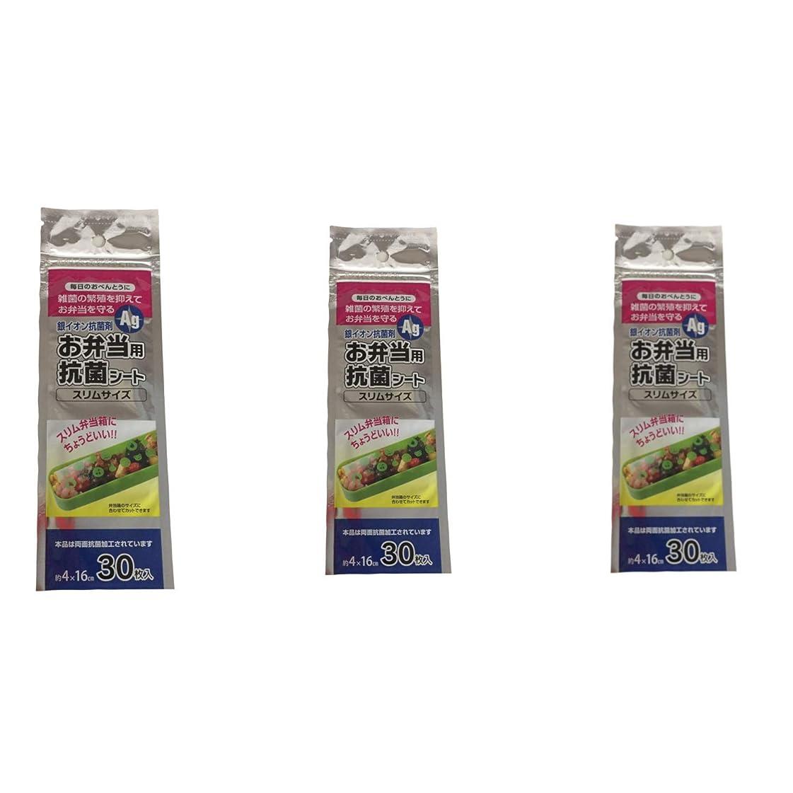 暴行取り組む有利大和物産 お弁当 抗菌 シート スリム 弁当箱用 30枚入 透明 4×16cm 3個セット