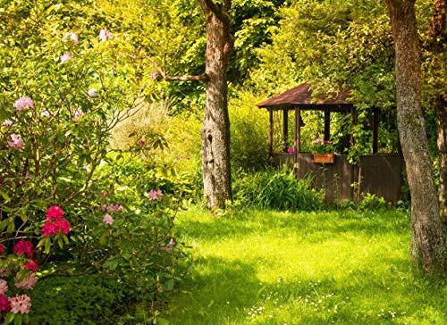 VLIES Fototapete-MAGISCHER GARTEN-500x280 cm-10 Bahnen-(22669)-Inkl. Kleister-EASYINSTALL PREMIUM-Blumen Blüten Orchideen Pflanzen Bäume Garten Sonne Steine Wald Natur Landschaft Panorama