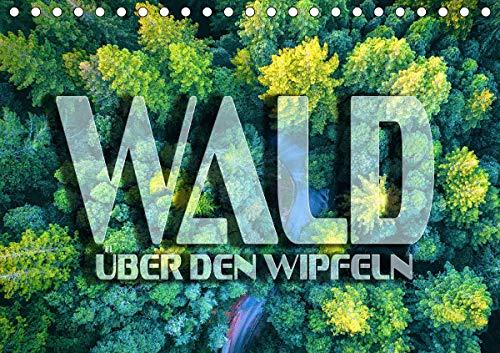 Wald - über den Wipfeln (Tischkalender 2021 DIN A5 quer)