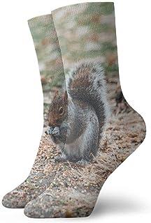 ASS, Pack de calcetines de vestir unisex Calcetines de poliester divertidos de ardilla marrón y gris