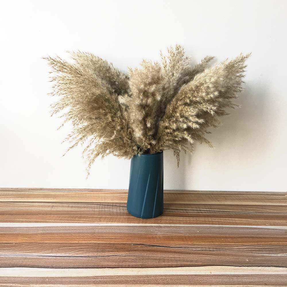 Artificial and Dried Flower Direct sale of manufacturer 10pcs Bulrush Reeds Hom Grass Selling selling Pampas
