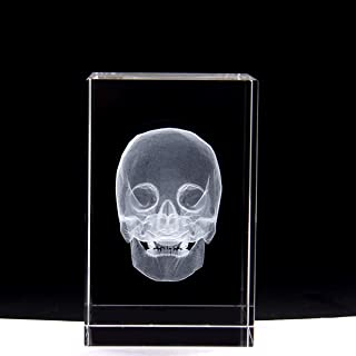 3D Human Skull Anatomical Model Paperweight(Laser Etched) in Crystal Glass Cube Science Gift (No Included LED Base)(3.1x2x2 inch)