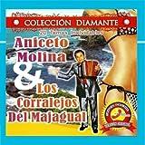 20 Temas Inolvidables by Aniceto Molina & Los Corralejos Del Madrigal
