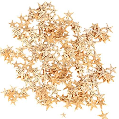 TinaWood 90PCS 0.4'-1.2' Small Starfish Star Sea Shell Beach Crafts Decor (Yellow)