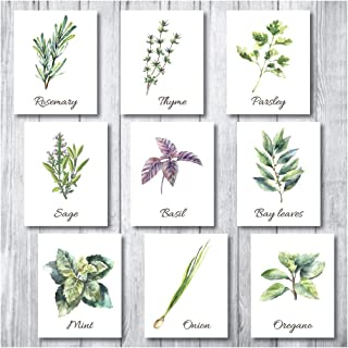 Botanical Prints Wall Decor - Kitchen Art Herbs Leaves Set UNFRAMED Pictures 9 PIECES Nature Floral herb Plant Flower Green Small Botanical Prints Wall Art Vintage Print Poster (White, 5x7)