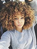 AISI BEAUTY Short Curly Wigs for Women Synthetic Hair Blonde and Brown Curly Afro Wig with Wig Cap