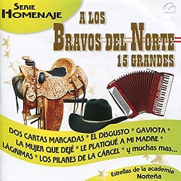A los Bravos del Norte 15 Grandes