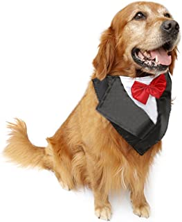 PetFavorites Large Dog Tuxedo Costume - Cat Wedding Bandana Collar with Bow Tie for Halloween - Golden Retriever Sheepdog Clothes Outfits Accessories, Handmade and Adjustable Size 22.5 to 26-Inch.