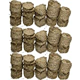 <span class='highlight'>AB</span> <span class='highlight'>Tools</span> <span class='highlight'>Rosewood</span> 3KG Small Animal Pet Treat Guinea Pig R<span class='highlight'>ab</span>bit Naturals Meadow Hay Cookies