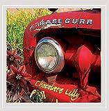 Songtexte von Babe Gurr - Chocolate Lilly