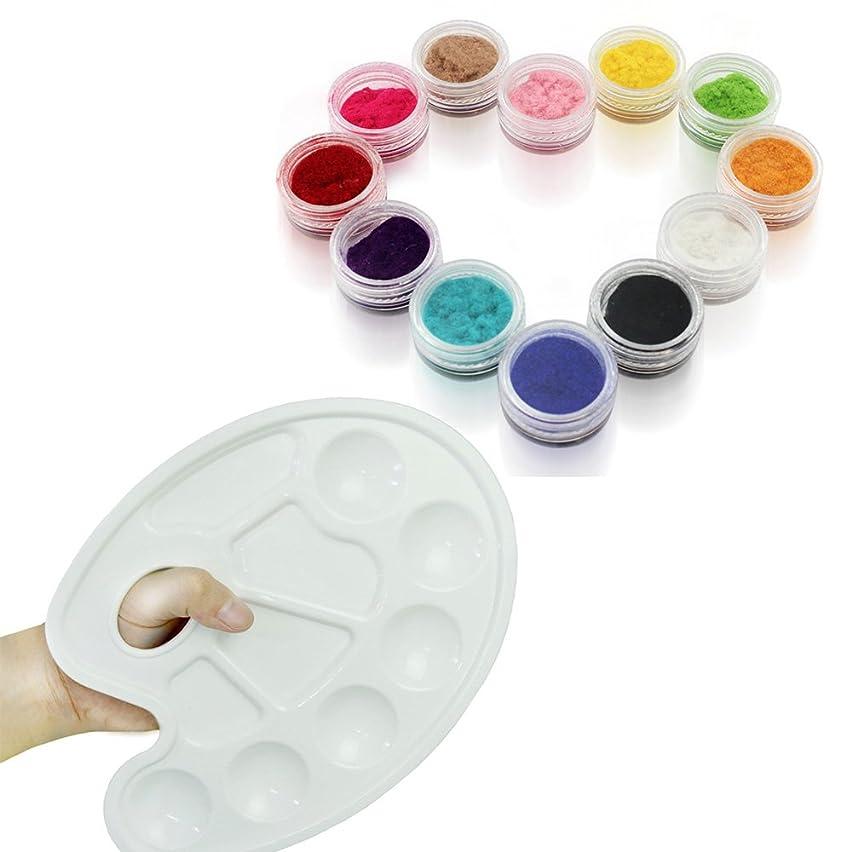 シールあたり細菌ベルベットネイル ベルベットパウダー ふわふわベロア ネイル用パウダー 12色 セットとネイル パレット ジェルネイルパレット1枚 [並行輸入品]