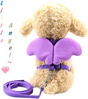 Pet Cat Dog Puppy Chest Strap  Angel Wings Vest with Leash  Harness and Collars Set for Small Doggie
