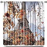 fucyBu Cortinas de Parque Central Park, Otoño, Torre Eiffel con aislamiento térmico y privacidad para dormitorio, decoración del hogar, oficina, sala de estar, cortina de ventanas de 55 x L63 pulgadas