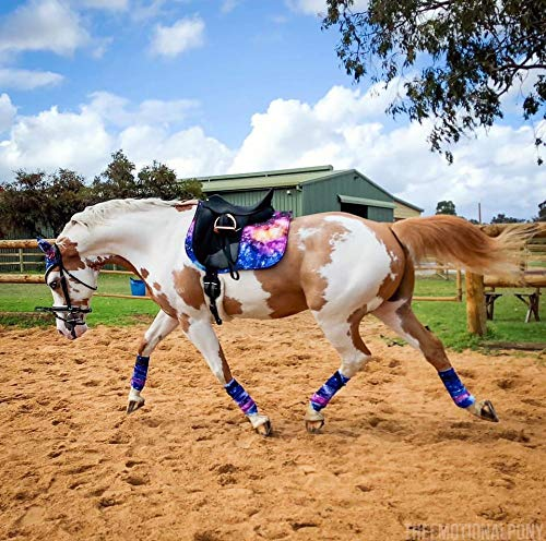 Lukar Galaxy Complete Set (Pony)