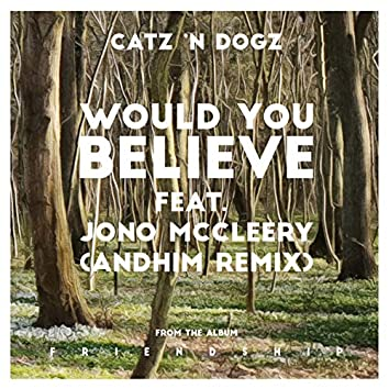 Would You Believe (andhim Remix)