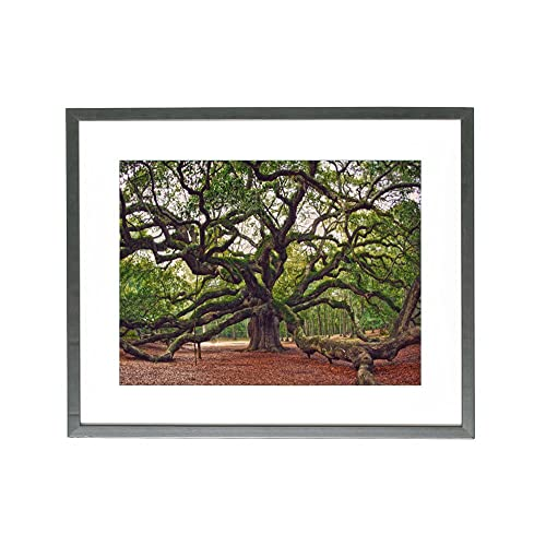 92cb60126fb South Carolina Art  Amazon.com