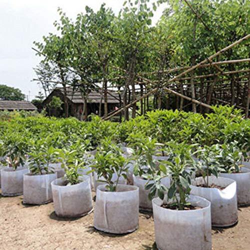 Steellwingsf Vasi Da Vivaio In Tessuto Non Tessuto, Vasi Rotondi In Tessuto Sacchetto Per Piante Contenitore Per Radici Coltivazione Pianta Da Vaso Coltivazione Borsa 5 galloni con maniglie