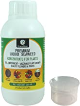 OrganicDews Liquid Seaweed Concentrate for Plants 250 ml with Measuring Cup 25 ml Fertilizer for All Indoor and Outdoor Pl...
