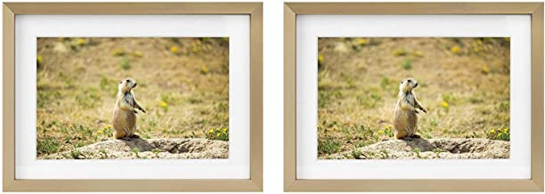 Golden State Art Two 5x7 Picture Frames - Gold Aluminum (Shiny Brushed) - Fit Photo 4x6 with Ivory Mat or 5x7 Without Mat - Metal Frame Real Glass (5x7, Set of 2, Gold)
