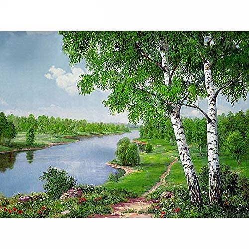YCDtop 5D Diamond DIY Mosaic Landscape Diamond Painting Birch Trees Full Set Diamond Embroidery River Pictures of Rhinestone 30x40cm(15.7x11.8in)