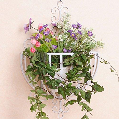 $Etagère d'exposition Suspension Flower Stand, Iron Flower Racks Mur suspendu Paniers de fleurs rondes ( Couleur : C , taille : 54*35CM )