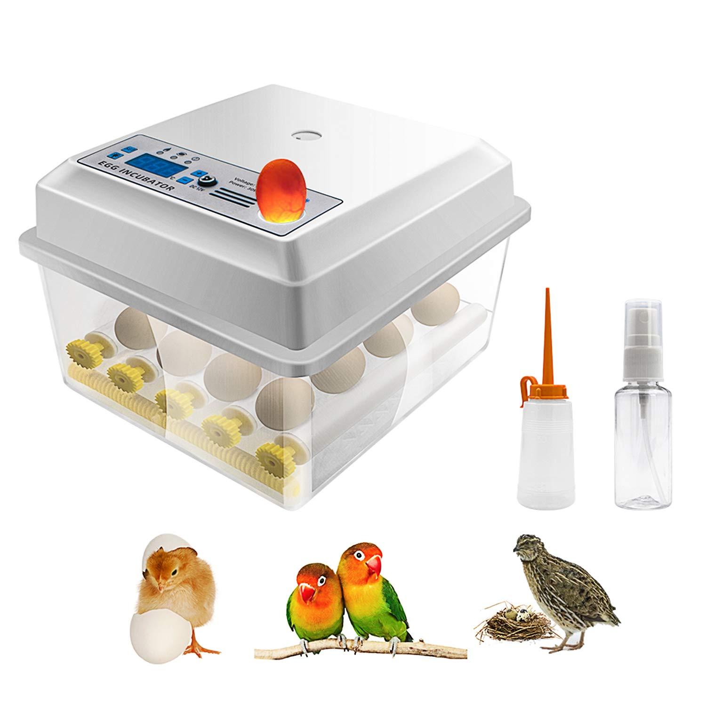 Time sale Safego Egg Choice Incubator for Hatching w Mini Eggs Digital