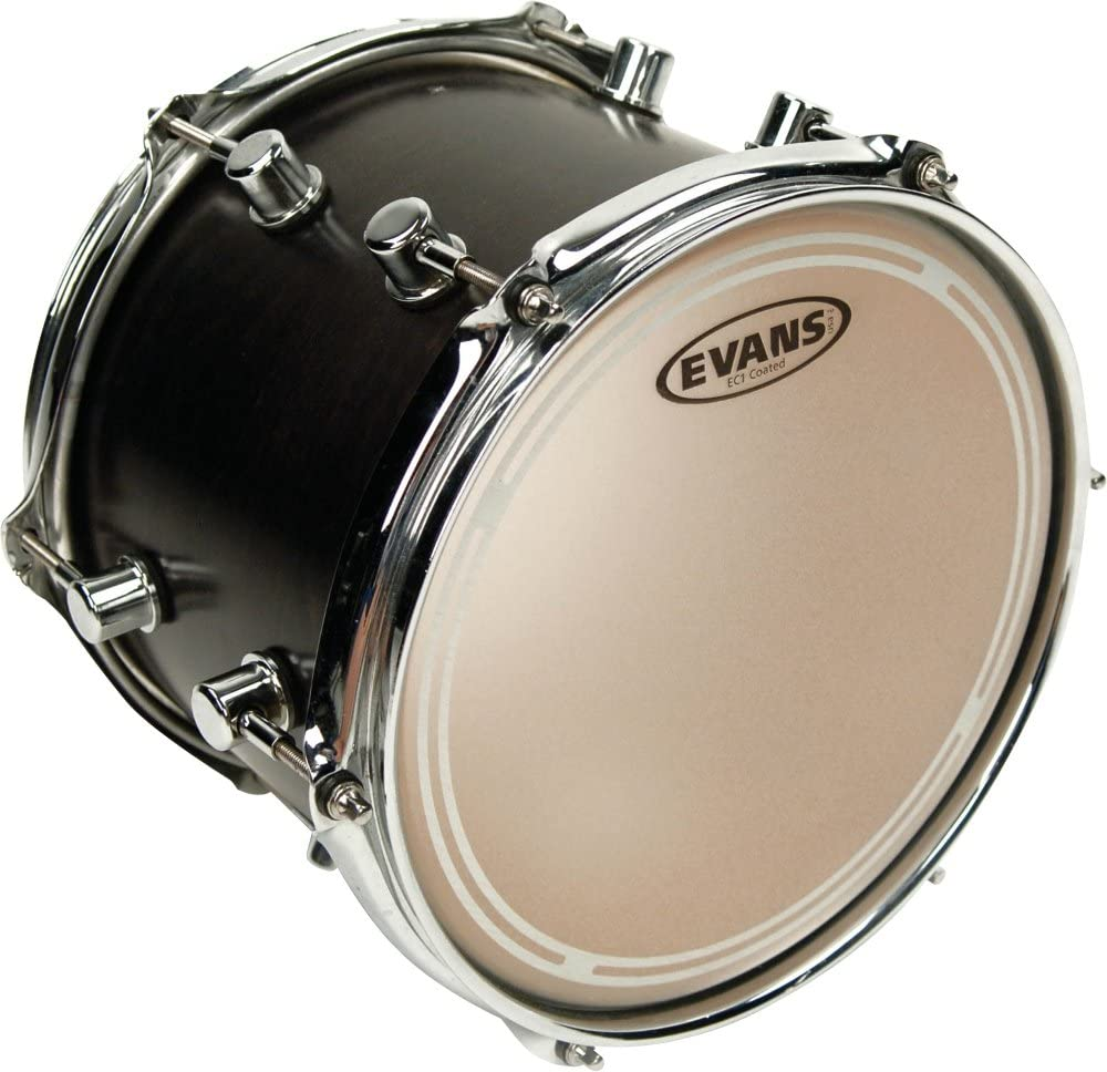 Evans EC1 Coated Boston Mall Drumhead 16 inch Max 47% OFF