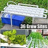 Jintaihua Hydroponic Grow Kit de 36 agujeros para plantar 1 capa de cultivo hidropónico de PVC, kit de cultivo hidropónico de soiless