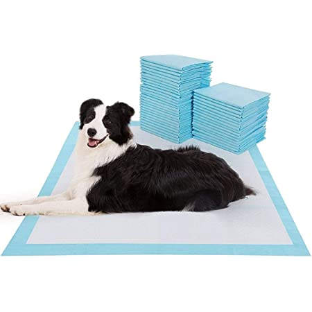 90X60cm 60 Piece Pet Training Pads for Dog and Puppy, Rapid-Dry Technology 90x60cm / Pack -60Nos