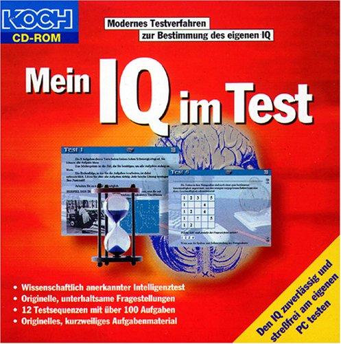 Mein IQ im Test