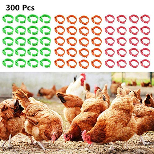 300 Pezzi Regolabile Clip Numerata su Anelli Gamba,Anelli Gamba Pollame,Uccello Leg Bands, Chicks Anatre Pollo Oca Anelli A Clip