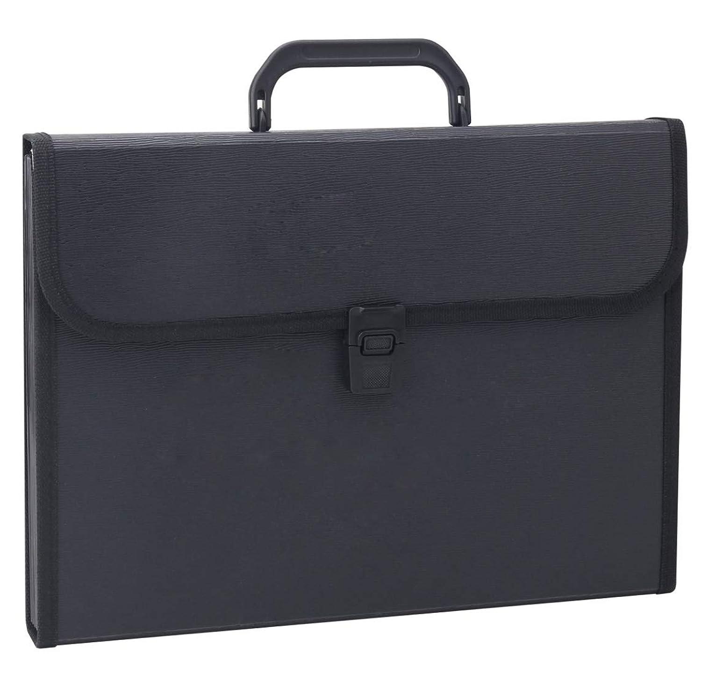 [ウーラ] キャリングケース ファイルケース A4 手提げ 大容量 ビジネスバッグ 多機能 ファイルパッケージ 書類かばん 収納ケース (ブラック) バッグ型 持ち運び プラスチック オフィス用品 事務用品 大人気 ファッション A4書類バッグ ファイルフォルダーA4 拡張フォルダ A4書類フォルダー 13ポケット ポータブル じゃばら 紙挟み 超軽量