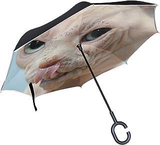 407c7e89105c Amazon.com: swisstek double layer reversible smart umbrella