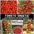 RED Cherry Tomato Sweetie 15 Seeds Sweetest Juice Easy…