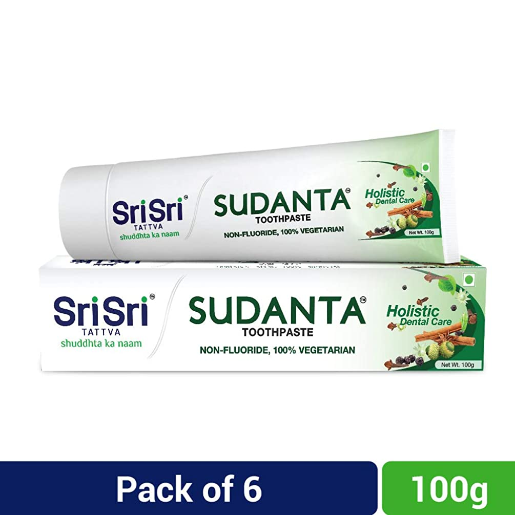 ストロークみなさん暗殺Sri Sri Tattva Sudanta Toothpaste, 600gm (100 x Pack of 6)