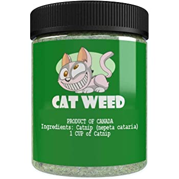 Cat Weed Catnip has Maximum Potency Premium Blend Nip That Your Cats to Go Crazy Over