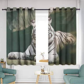 AndyTours Curtains for Bedroom,Tiger Bengal Symbol Swimming White Beast with Black Sprites Large Cat Animals Having Fun,Great for Living Rooms & Bedrooms,W63x63L,Teal White