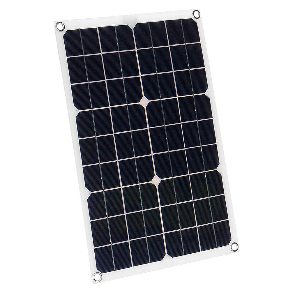 アセンブリ暴露する系譜ソーラーパネル バッテリー太陽電池モジュールのカーボートアウトドアサイクリングクライミングハイキングチャージャー50W 18VデュアルUSBソーラーパネル 太陽光発電 (Color : Black, Size : 50W)