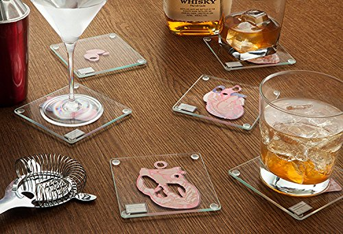 Product Image 4: Anatomic Heart Specimen Coasters (Set of 6 Pieces) – Brain Coaster Set Also Available