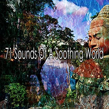71 Sounds of a Soothing World