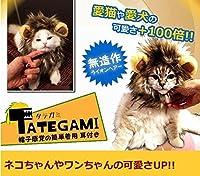 【愛猫や愛犬の可愛さが+100倍に】猫が超可愛いライオンに変身 ペット用 コスプレキャップ 帽子感覚で簡単装着