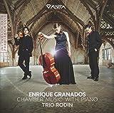 Chamber Music with Piano - Trio Rodin