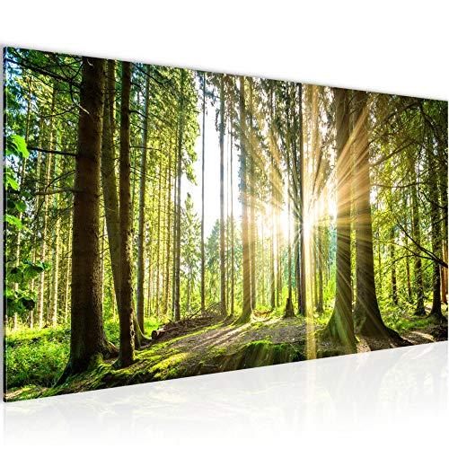 Bilder Wald Landschaft Wandbild Vlies - Leinwand Bild XXL Format Wandbilder Wohnzimmer Wohnung Deko Kunstdrucke Grün 1 Teilig - MADE IN GERMANY - Fertig zum Aufhängen 503812b