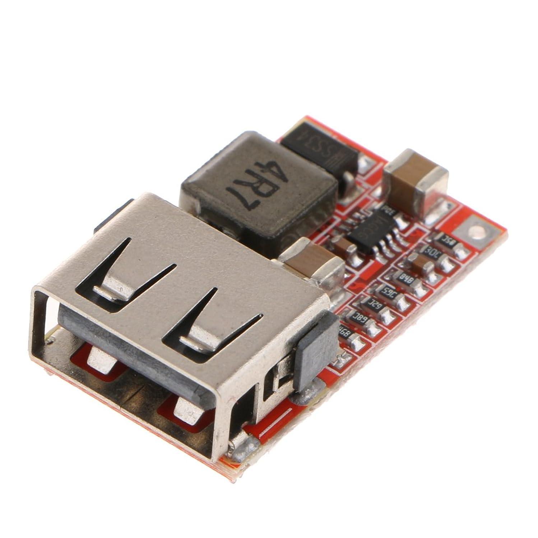 保証群集津波DC-DC降圧コンバーター 6-24V 12V 24V to 5V ステップダウン 車 スマホ USB充電用