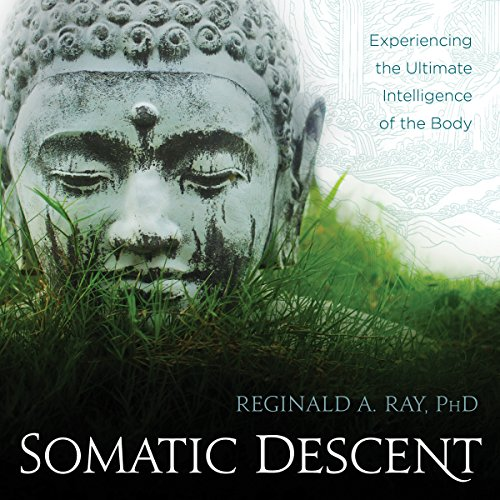 Somatic Descent audiobook cover art