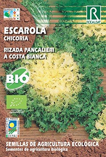 Semillas ECOLOGICAS Escarola Rizada Pancalieri 5 gr.