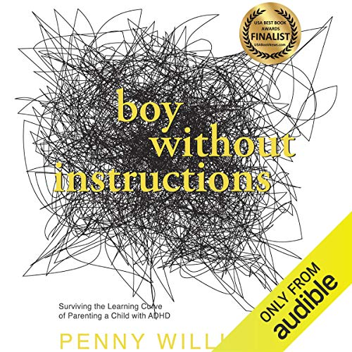 Boy Without Instructions  By  cover art