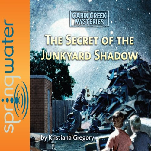 The Secret of the Junkyard Shadow cover art