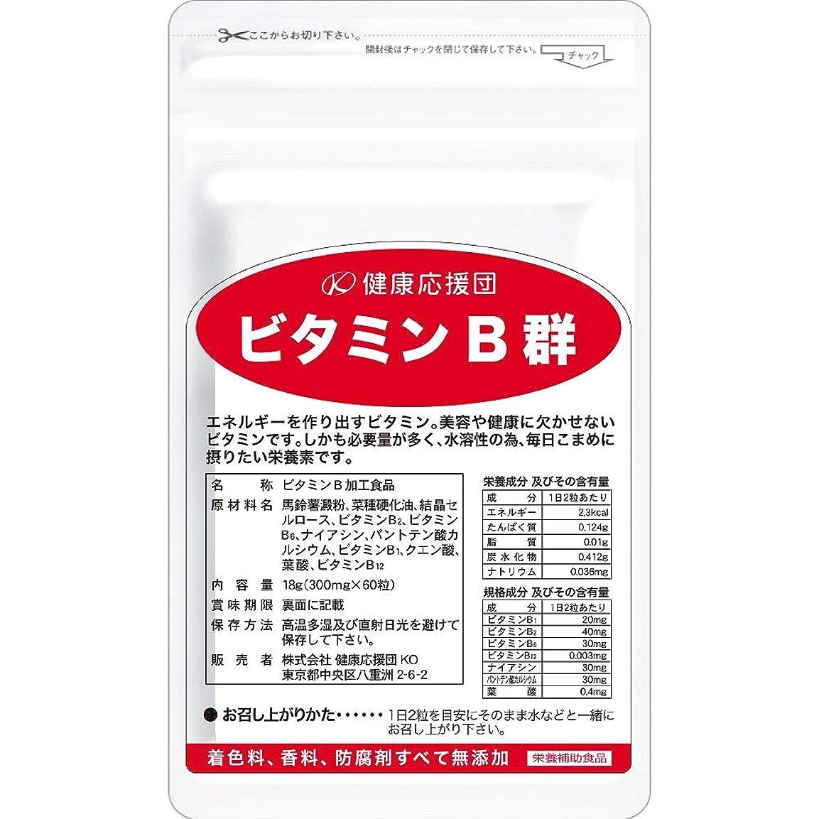 速度手がかり者健康応援団 お徳用 ビタミンB群 (12か月分)12袋720粒(葉酸プラス)